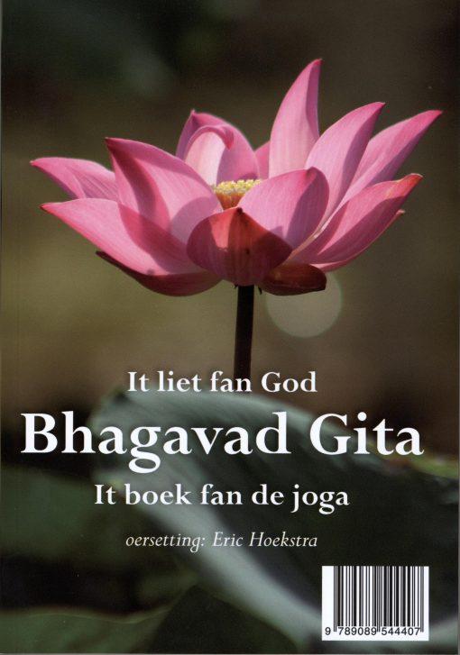 Bhagavad Gita / Het boek van de yoga