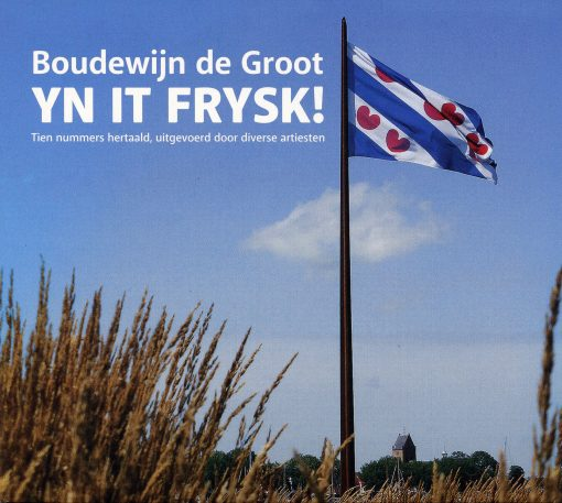 Boudewijn de Groot yn it Frysk