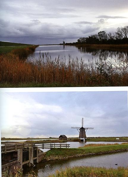 Glans op het Wad Texel
